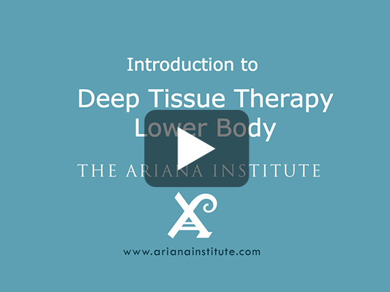 Ariana Institute's Introduction to Deep Tissue Therapy - Lower Body